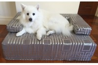 Magnetic Designer Pet Bed with Cotton Cover