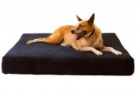 Magnetic Pet Bed 20cm with Suede Cover