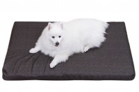 Magnetic Pet Bed 10cm with Cotton Cover