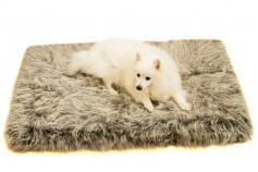 Specials - Magnetic Pet Bed Large 10cm