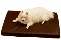Magnetic Pet Bed 10cm with Faux Leather Cover