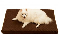 Magnetic Pet Bed 10cm with Suede Cover