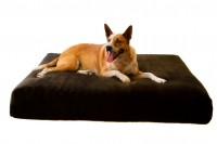 Magnetic Pet Bed 20cm with Faux Fur Cover