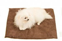Magnetic Pet Blanket with Suede Cover
