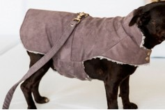Magnetic Pet Coat - Suede
