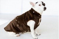Magnetic Pet Coat - Soft Poly
