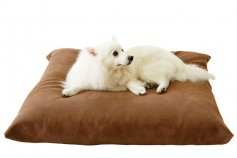 Magnetic Pet Cushion - Suede