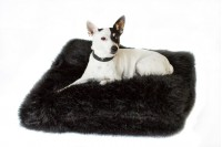 Magnetic Pet Cushion - Faux Fur