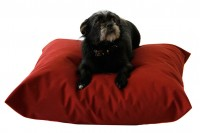 Magnetic Pet Cushion - Canvas Waterproof