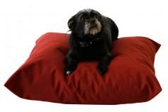 Magnetic Pet Cushion - Canvas Waterproof
